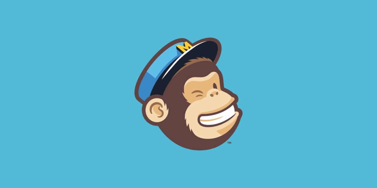 Should you mention MailChimp in your website privacy policy?